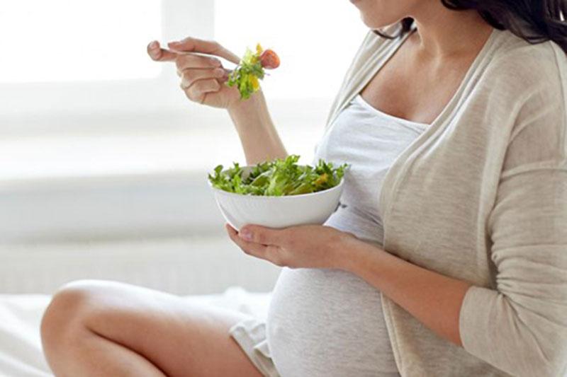 Nutricion en el embarazo fisiofit